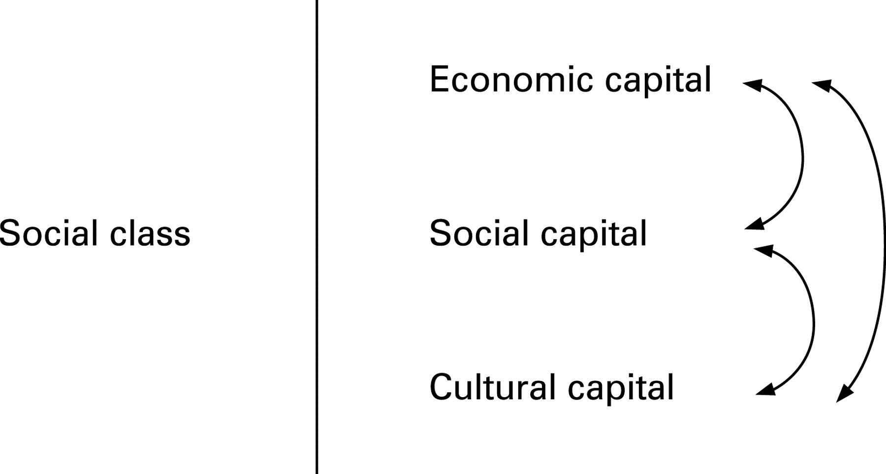 cultural capital examples
