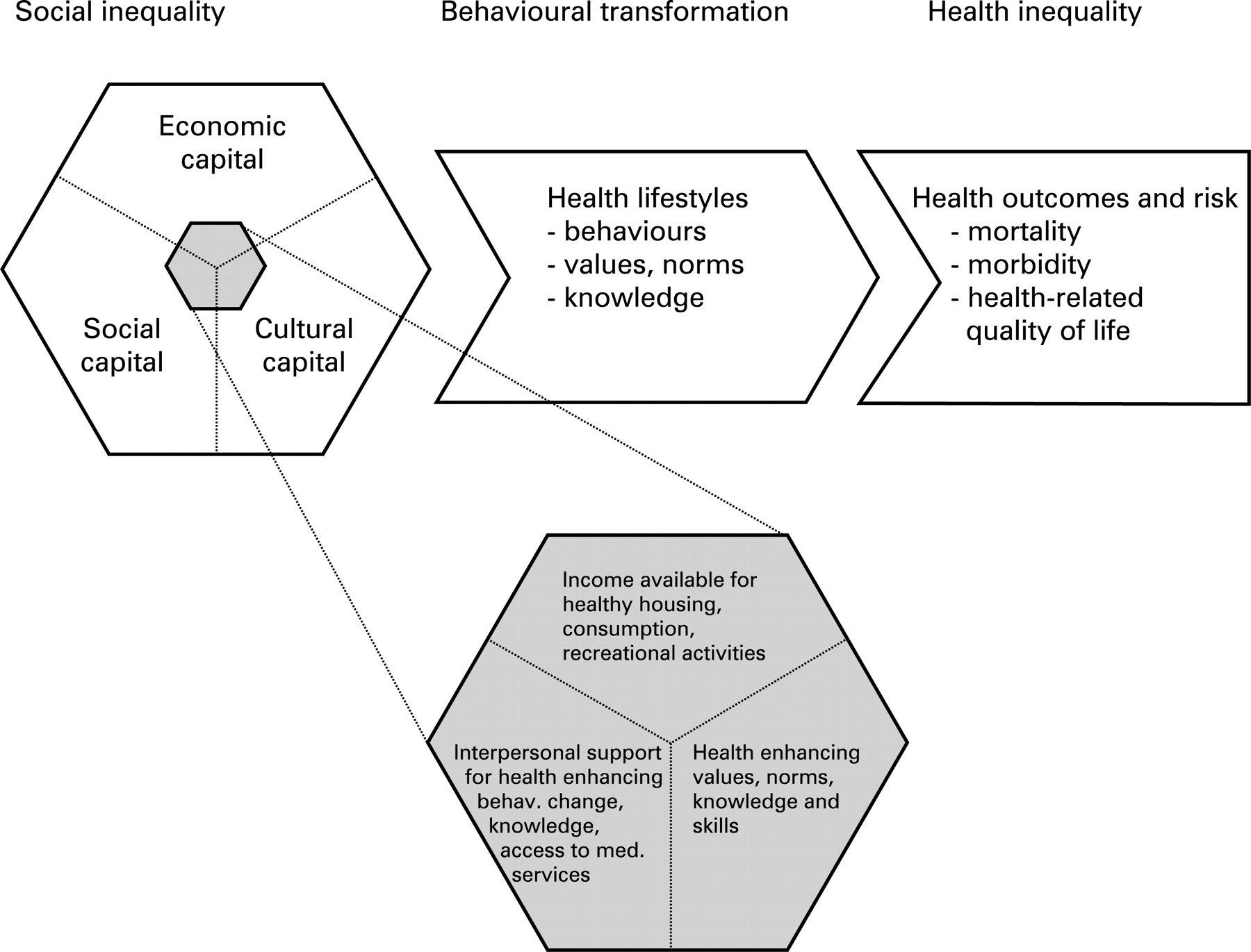 an evalution of different explanations of social inequality Explaining gender differences• there are 3 different groups of explanations: – biological – social roles – structural factors 10 biological explanations• biological explanations focus on genetic and physiological differences – male and female bodies are different• but mortality and morbidity gaps change over time and between.