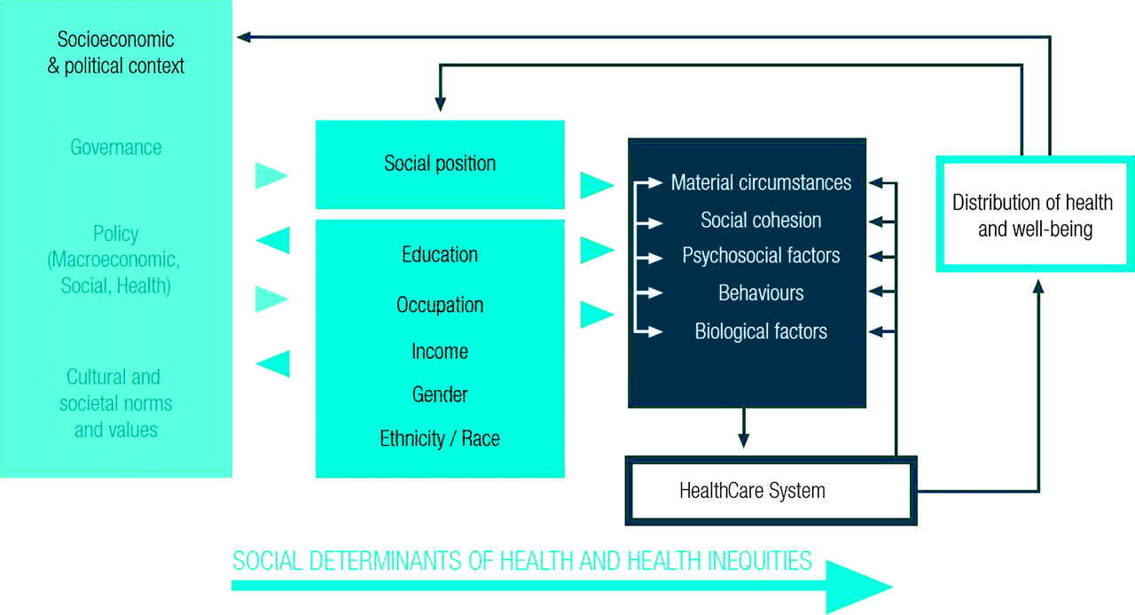 Primary Health Care And The Social Determinants Of Health Essential