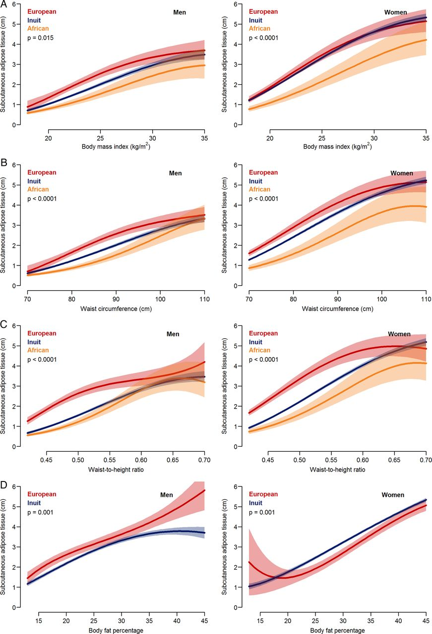 Ethnic differences in anthropometric measures and abdominal
