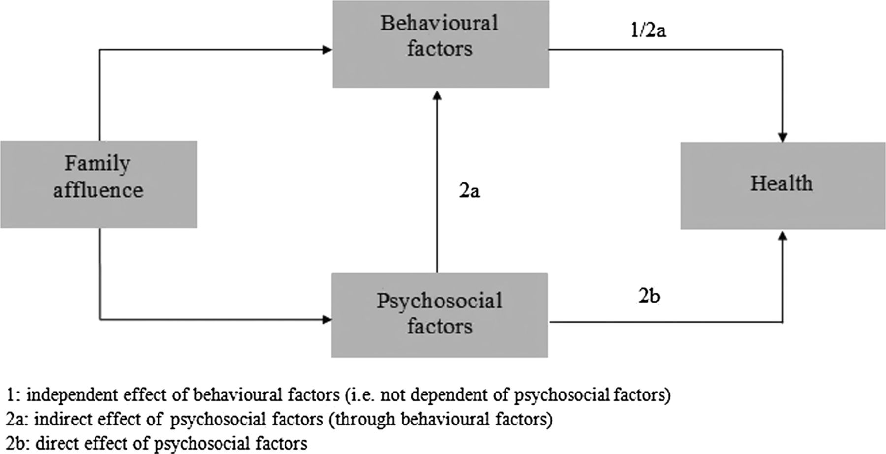 Psychosocial and behavioural factors in the explanation of ...